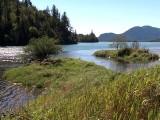 Harrison Salmon Stronghold Slough Restoration 2014